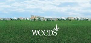 mediacritica_weeds