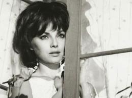 Signore & signori (1966)