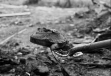 Dawson City – Il tempo fra i ghiacci