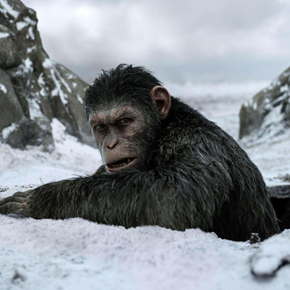 mediacritica_the_war_il_pianeta_delle_scimmie_290