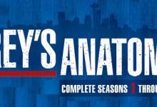 Grey's Anatomy – Season 8