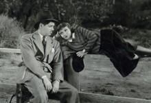 Accadde una notte (1934)