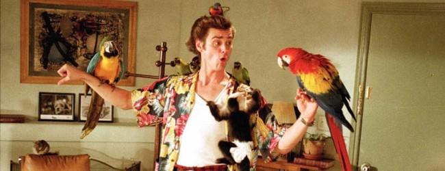Ace Ventura – L'acchiappanimali (1994)