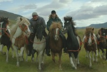 Storie di uomini e cavalli