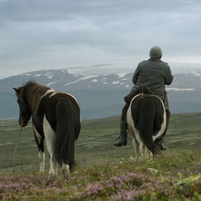 mediacritica_of_horses_and_men