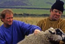 Piovono pietre (1993)