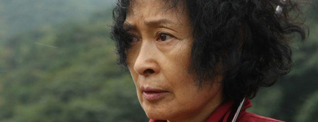 Madre (2009)